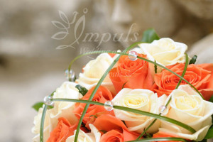 Castle_wedding_CS6