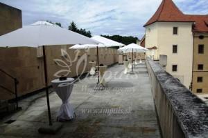 Castle_terrace_2
